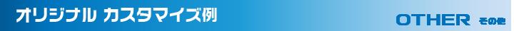 オリジナルカスタマイズ例 DAYZother デイズルークス